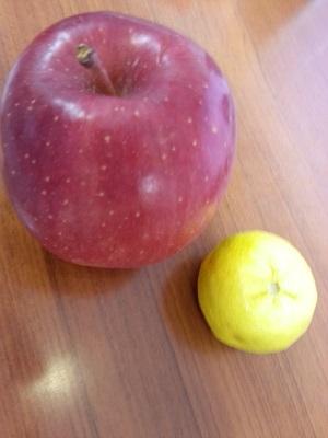 りんごとゆず.jpg