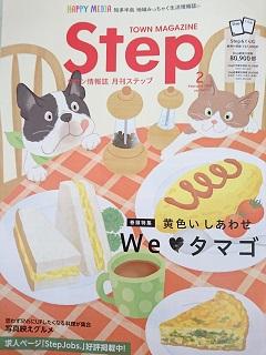 ステップH30②.JPG