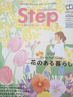 ステップH30③.JPG
