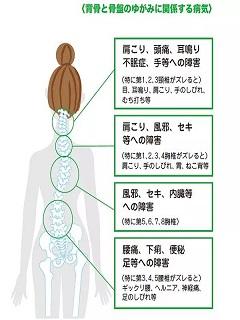 内側健康2.jpg