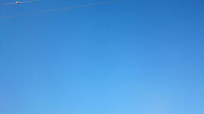 真っ青な空.jpg