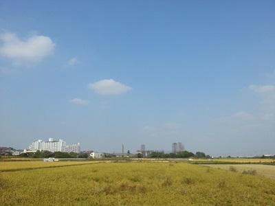 空105.jpg