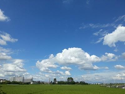 空42.jpg