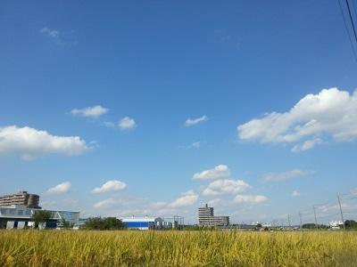 空84.jpg