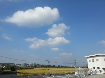 空94.jpg