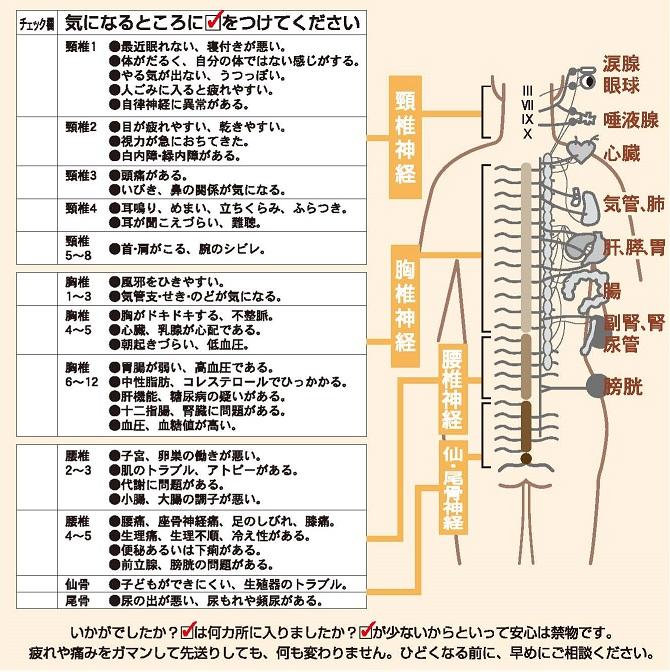 2-sakabe-uraチラシカラダチェック.jpg